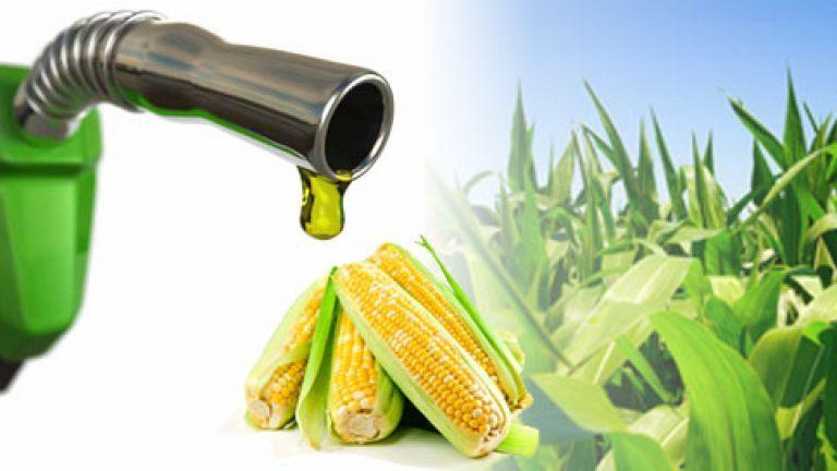 Apele reziduale devin etanol